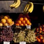 """""""Market Fruit"""" by raetucker"""