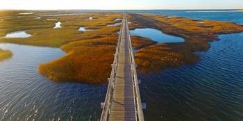 Bass Hole Boardwalk at Yarmouth, Cape Cod