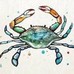 """Maryland Blue Crab"" by Littlepig"
