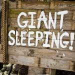 """Giant Sleeping"" by raetucker"