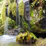 """""""Winter Waterfall"""" by raetucker"""