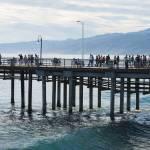 """Santa Monica Pier (California)"" by jcarillet"