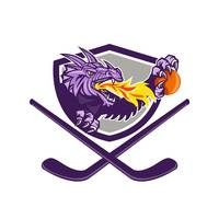 Dragon Fire Ball Hockey Stick Crest Retro