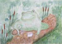 Frog having a tea break.