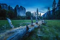 El Capitan Meadows at Twilight