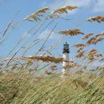 """Lighthouse through Sea Oats"" by Groecar"