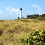 """Bill Baggs Lighthouse with Dunes"" by Groecar"