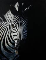 Into The Light - Zebra
