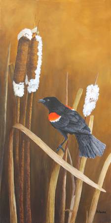 Marsh Song - Red-winged Blackbird