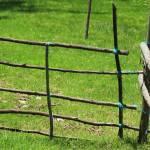 """""""Wood Fence"""" by rhamm"""