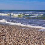 """Shell Beach"" by steveondrusphotography"