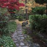"""Litha Park Ashland Oregon"" by akstp"
