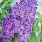 """Hyacinth"" by joeyartist"