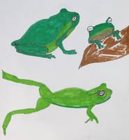 Three Frogs.