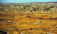 Badlands of North Dakota 2007 #1