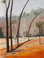 Dryandra Four Trunks