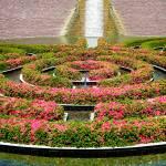 """Getty Museum Gardens Study 8"" by robertmeyerslussier"