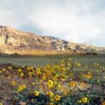 """Dawn in Death Valley"" by RCdeWinter"