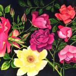 """My happiest rose garden copyright mjgmoffett www.s"" by ArtbyMaryJaneGM"