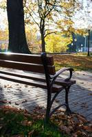 brown bench in city park