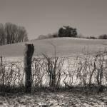 """Snow Hill"" by GordonBeck"