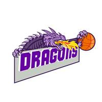 Dragon Head Fire Clutching Basketball Retro