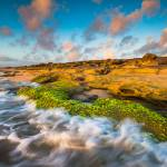 """Washington Oaks State Park Coquina Rocks Beach St."" by DAPhoto"
