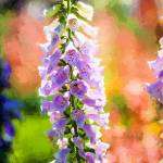 """Delphinium #1"" by johncorney"