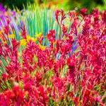 """Spring Garden #3"" by johncorney"