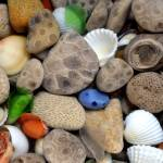"""Petoskey Stones lll"" by Michelle1991"