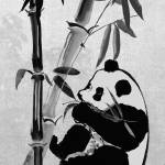 """Giant Panda and Bamboo"" by spadecaller"