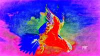 Abstract Bird Art 15