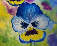 The Blue Pansy