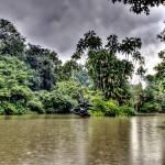 """Botanic Garden Singapore"" by sghomedeco"