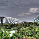 """Garden by the Bay Singapore"" by sghomedeco"
