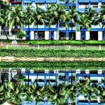 """Under The Coconut Tree, Pasir Ris Town Singapore"" by sghomedeco"