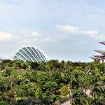 """Panorama Garden by the Bay Singapore"" by sghomedeco"