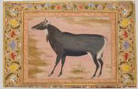 Study of a Nilgai (Blue Bull), Folio from the Shah