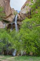 Calf Creek Falls and the Hanging Gardens