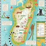 """Illustrated Map of Madagascar by Nate Padavick"" by TheyDrawandCook"