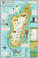 Illustrated Map of Madagascar by Nate Padavick by They Draw & Cook & Travel