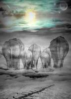 Elephants Graveyard
