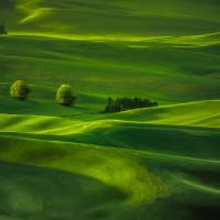 Palouse Waves Art Prints & Posters by Don Schwartz