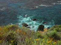 Cool Water, Big Sur