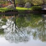 """Franklin Park Reflections"" by KsWorldArt"