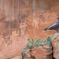 capitol reef petroglyphs with raven Art Prints & Posters by r christopher vest