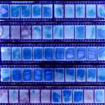 """half frame contact sheet sun print chemical free"" by jnanian"