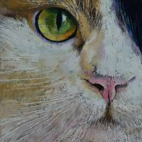 Calico Cat Art Prints & Posters by Michael Creese