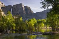 Yosemite_2008_merced_river