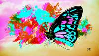 Abstract Butterfly Art 19